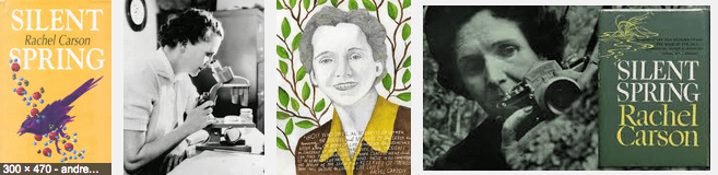 Environmental activism started in large part when Rachel Carson issued a wake up call in 1962.